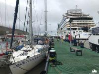 marina - Krysia i wielki statek pasażerski