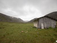 opuszczona chatka pośrodku niczego